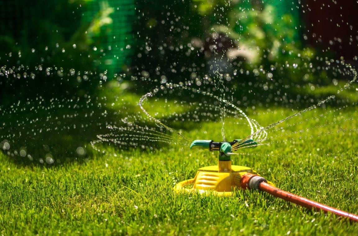 Comment entretenir sa pelouse pendant l'été ? La réponse en 6 étapes