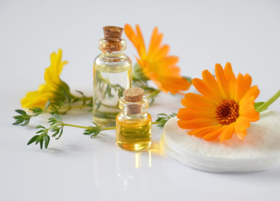 Remèdes naturels à base de plantes pour être bien armé cet hiver