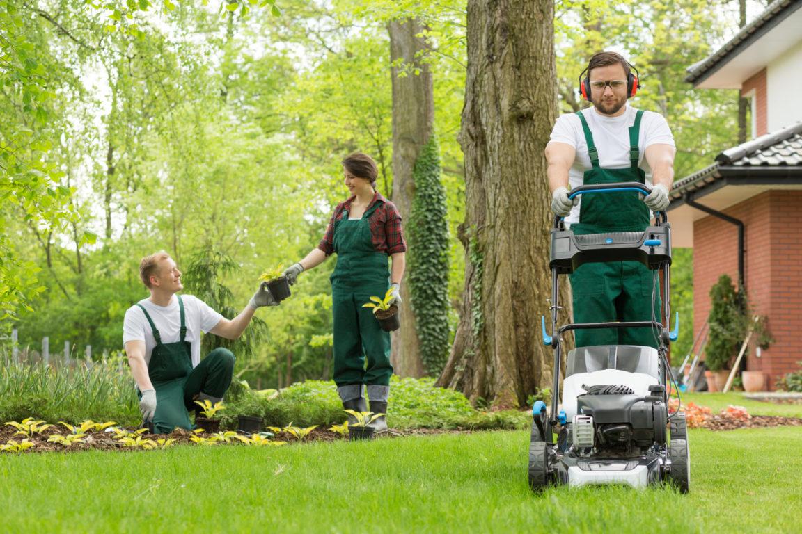 Travaux du jardin : à quelle heure peut-on faire du bruit au jardin ?