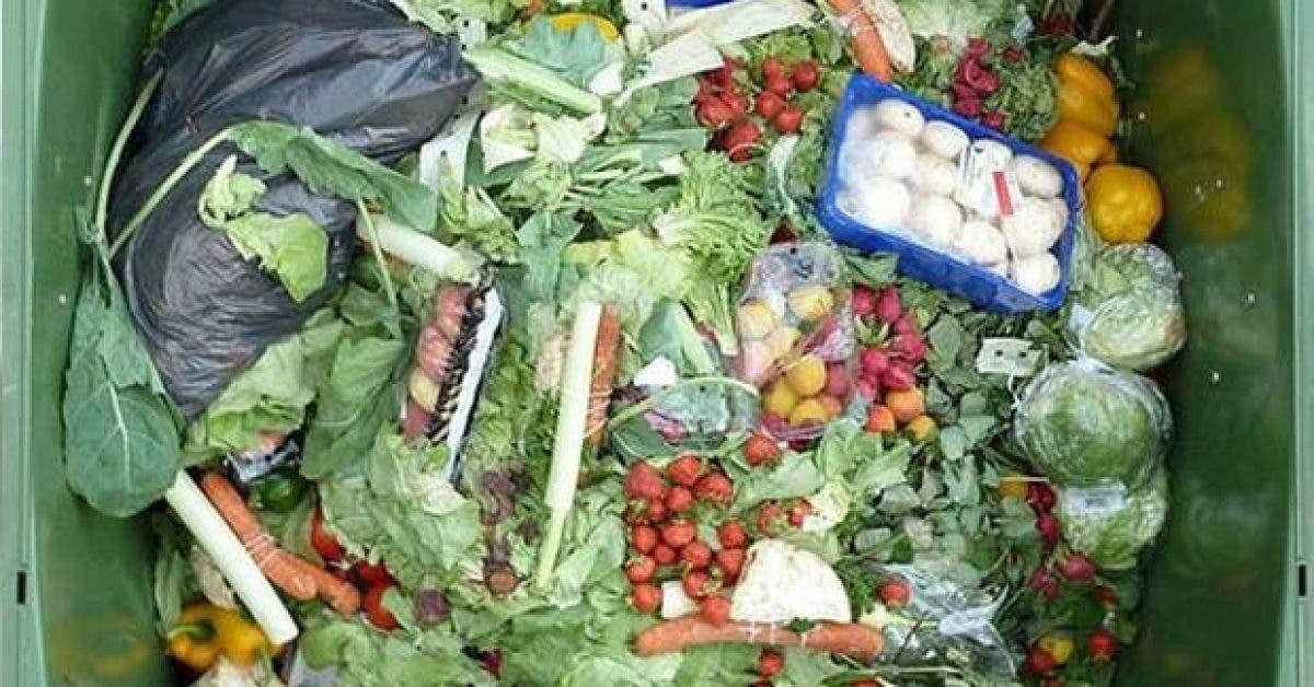 13 façons de réduire le gaspillage alimentaire