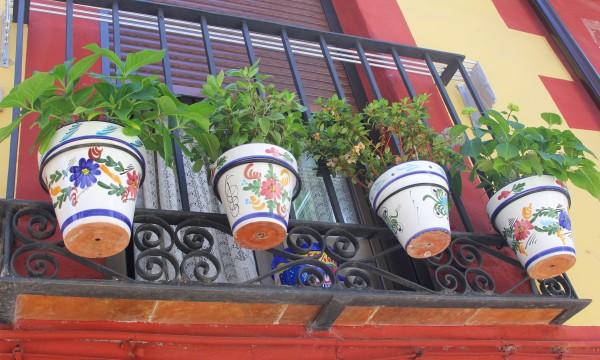 Quelques conseils utiles pour garder des pots de fleurs et des vases propres